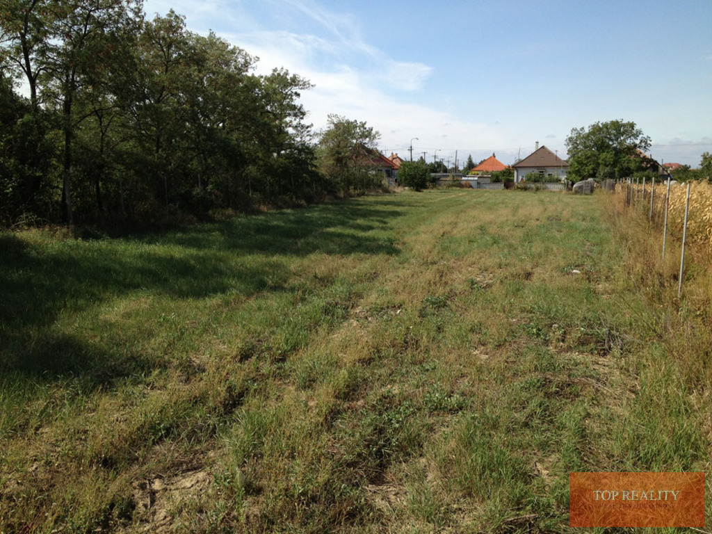 Topreality Rs.sk Na Predaj Stavebný Pozemok V Krásnom Prostredí V Obci Košúty 1