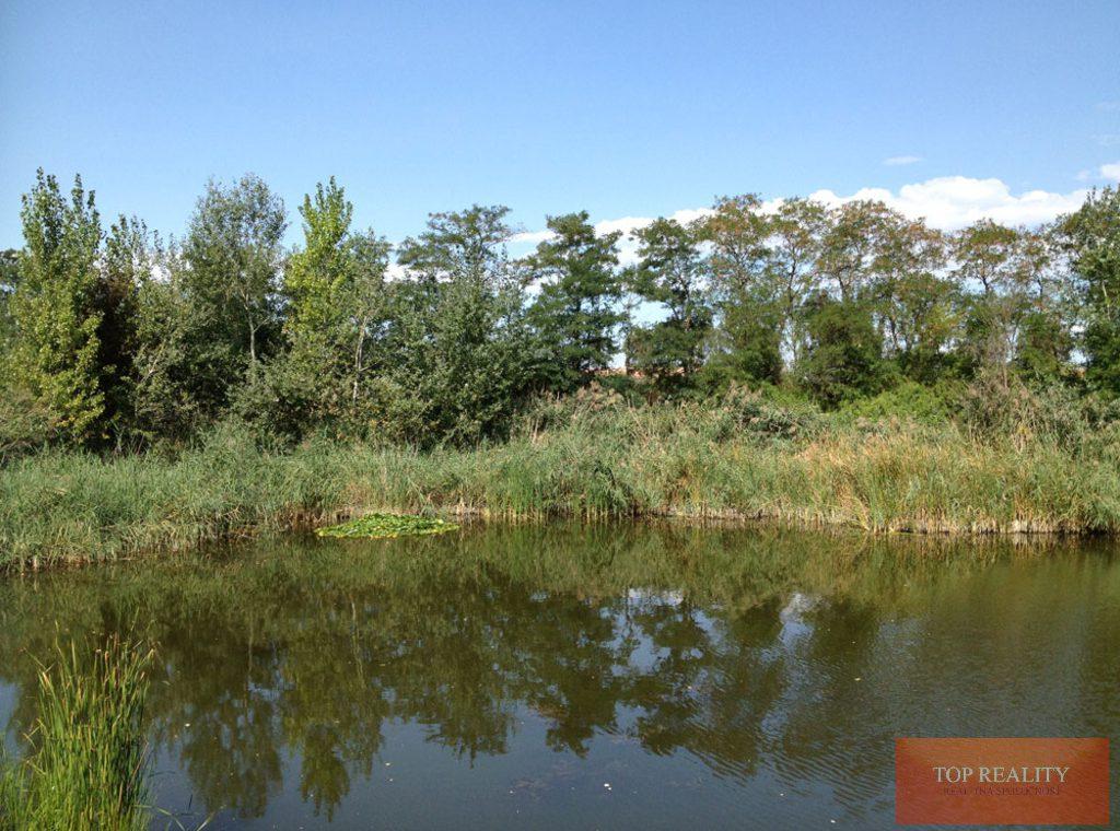 Topreality Rs.sk Na Predaj Stavebný Pozemok V Krásnom Prostredí V Obci Košúty 3